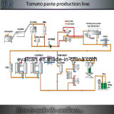 Concentrated Tomato Paste Production Plant