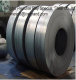 Mild Hot Rolled Steel Coils