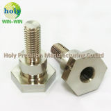 Precision Screw with Good Surface Treatment