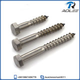 18-8/316 Stainless Steel Hex Head Wood Screw / Lag Bolt