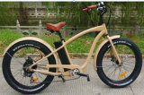 Electric Bicycle with Motor Pushed 48V 500W