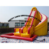Kids Adult Game Inflatable Water Slide with Pool