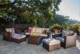 European American-Style Hotel PE Rattan Sofa Set
