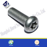 Theft Proof Steel Round Head Machine Screw