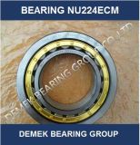 High Speed Cylindrical Roller Bearing Nu224 Ecm with Brass Cage