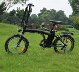 Chinese Mini Folding E Bike with Rear Rack (RSEB-103)