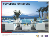 Latest White Wicker Rattan Outdoor Garden Sofa Set (TG-028)
