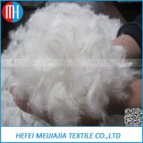 High Quality Washed Duck Down Feather Raw Material