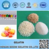 Gelatin Granular