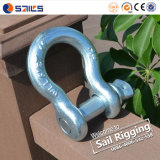 Drop Forged Marine Anchor Shackle with Pins
