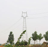 220 Kv Linear Angle Iron Power Transmission Tower with Single Circuit