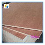 15mm Okoume Plywood / Bintangor Plywood Sheet