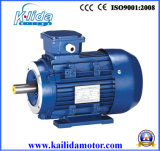 0.25 Kw Three Phase Induction Starter Electric Motor (Y2-711-4-B14)