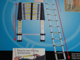 Telescopic Aluminum Ladder, Extension Ladder (SG-LE102E)