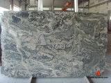 China Juparana Granite Slab for Flooring & Wall Tile