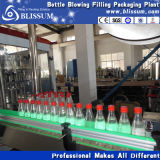 Bottle Beverage Filling Machine