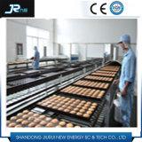 Stainless Steel Eye Link Mesh Belt Conveyor for Cooling Equipment