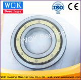 Brass Cage Deep Groove Ball Bearing and Insulation Bearing