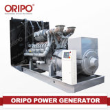 Diesel Generator with Universal AVR Automatic Voltage Regulator