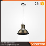 New Style 250mm Durable Bronze Aluminum Pendant Light