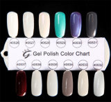 IBN Shellac Nail Art Gel Polish, 30 Days Wear, 5 Minutes off (New Colors Are Updating)
