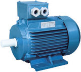 Y2 Series Three Phase Electric Motors