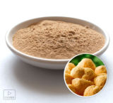 Hericium/Mushroom Concentrate Extract 1: 1--10: 1