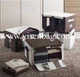 Fashionable Storage Box Oragnizer Box (YSOB06-010)