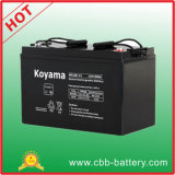 Industrial Battery AGM Battery VRLA Battery 100ah 12V