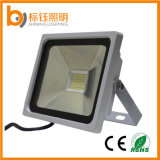The Newest SMD Linear Driver Outdoor IP65 Aluminium 10W LED Floodlight
