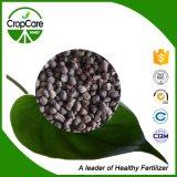 High Tower Water Soluble Granular Bb NPK 19-19-19 Fertilizer