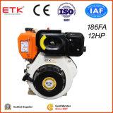 12HP Diesel Engine with CE/Golden Left Side