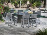 Wf070009 Rattan Patio 8PCS Dining Set High Chair