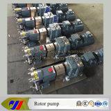 Infinitely Adjustable-Speed Type Rotor Pump