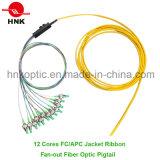 12 Cores FC APC Singlemode Jacket Ribbon Fan-out Pigtail