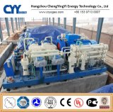 Oxygen Carbon Dioxide High Pressure Gas Filling Station Skid