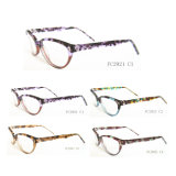 Most Popular and Fashion Optical Frame with Bold Color