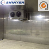 Customized Cold Storage Room for Fish Frozen