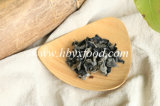 Easy Cooking Tree Black Fungus Healthy Vegetable