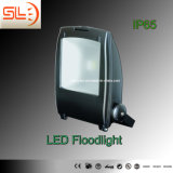 Outdoor Dark Colour 30W LED COB Floodlighting