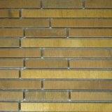 Home Improvement Freshwater Shell Mosaic Tile / Background Wall Mosaics Tiles