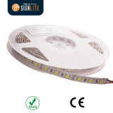 Factory 300LEDs/ 60LED/M Warm White SMD5050 LED Flexible Strip Ligt