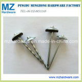 Galvanized Twisted Smooth Shank Umbrella Head Roofing Nail