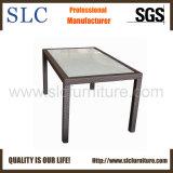 Rattan Table/Outdoor Furniture (SC-B1078-6)