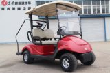 Suitable Prices 2 Seater Electric Golf Car with Caddie Plate From Dongfeng on Sale