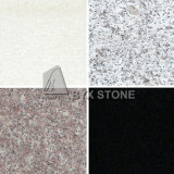 Polished Black/Red/Grey/White Granite for Tile & Slab