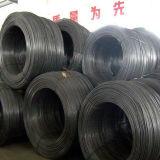 SAE1008 Wire Rod 5.5mm Mild Steel Wire Rods