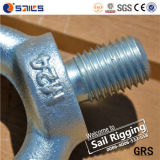 High Strength Carbon Steel Drop Forged Galvanized Lifting Eye Bolt DIN580