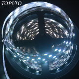 Dimmable Flexible RGBW LED Strip Light for Home Decoration