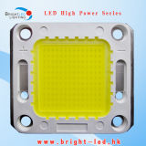 Double Gold Wire Connection 120W White LED Module COB